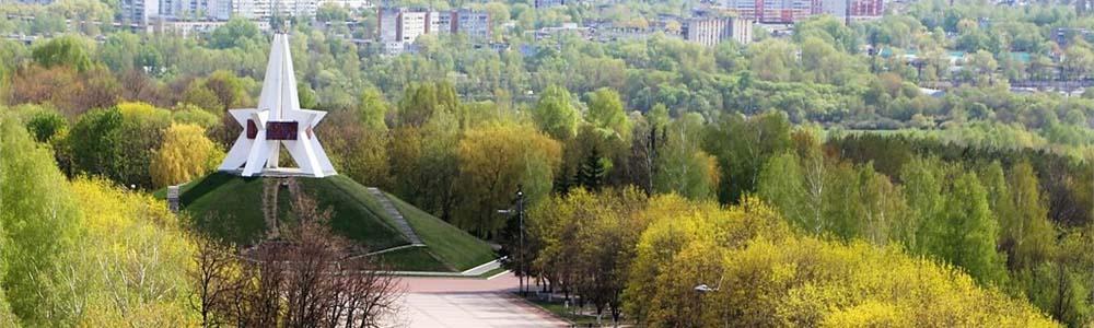 Билеты на самолет Минск Брянск дешево