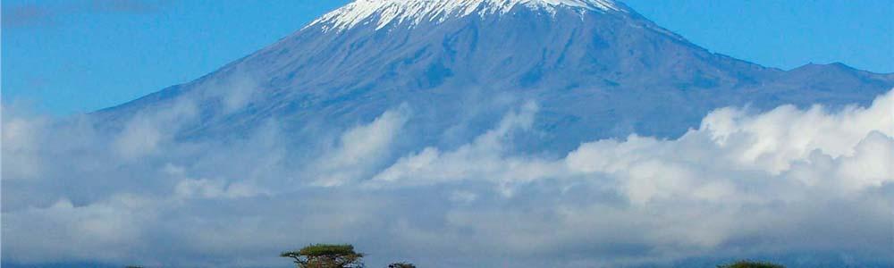 Билеты на самолет Киев Килиманджаро дешево